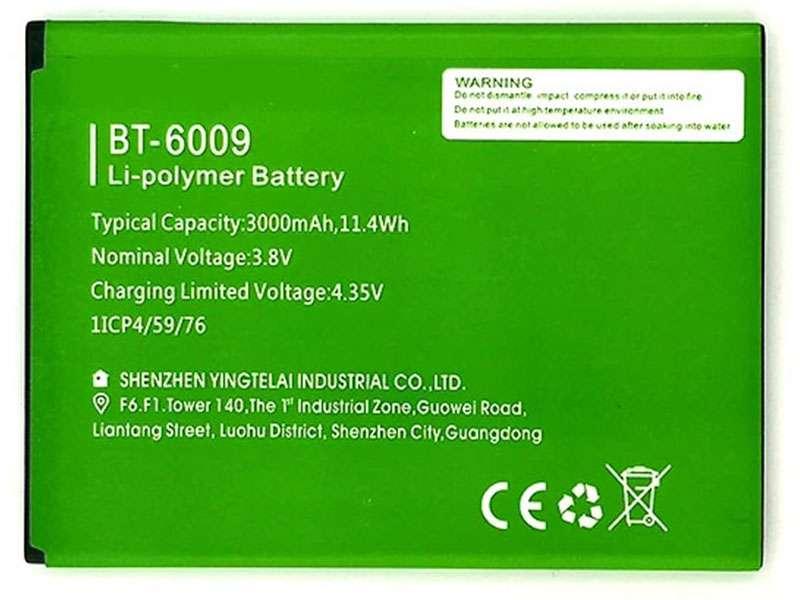 Battery BT-6009