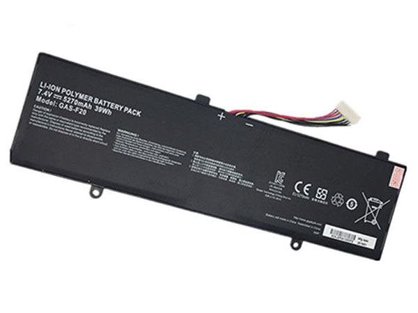Battery GAS-F20