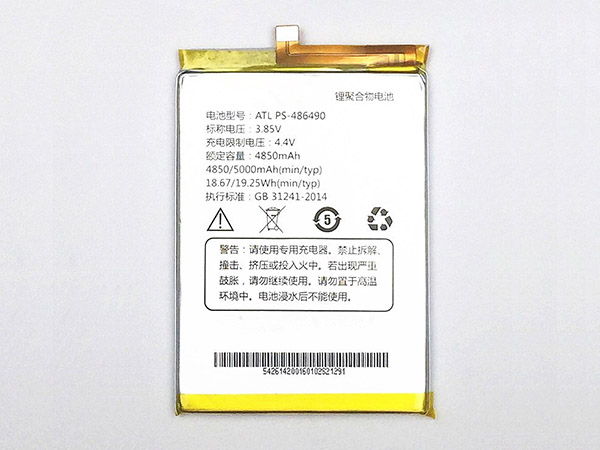 Battery PS-486490